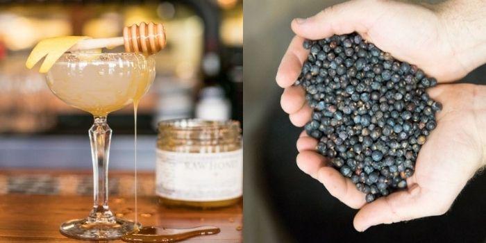A Barr Hill Bee's Knees cocktail; Juniper berries